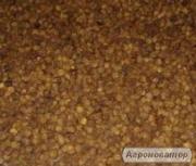 Пчелиная перга очищенная по 700 грн