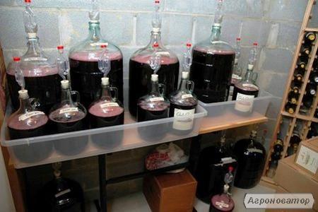Сделать виноградное вино домашних условиях