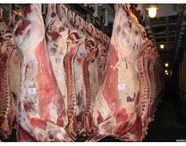 Продам яловичину, свинину в напівтушах в чвертях, оброблення.