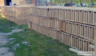Пчелопакеты, чистопородная Карпатка с доставкой.