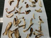 Заготуємо під замовлення гриби: білі. Грибі цілі, різані
