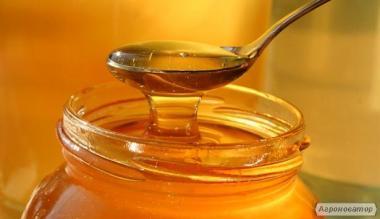Продам бджолиний мед зі своєї пасіки, оптом