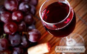 Домашнє закарпатське вино для глінтвейну оптом.