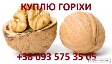 Закупаем орех бойний,без прошлогоднего и