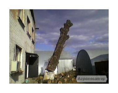 Видалення дерев