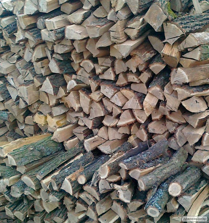 Дрова для опалення дуб вільха, сосна і береза