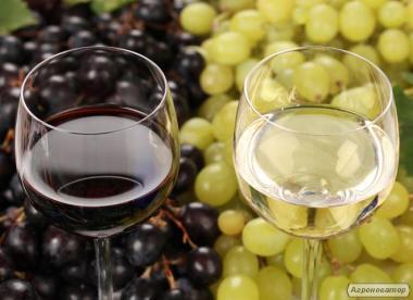 Домашнє Вино