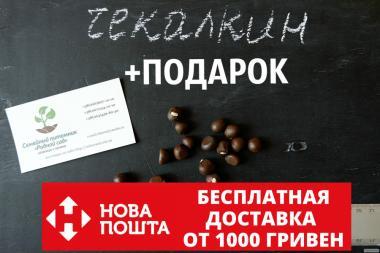 Чекалкин орех (Ксантоцерас) семена (10 штук)  для выращивания саженцев