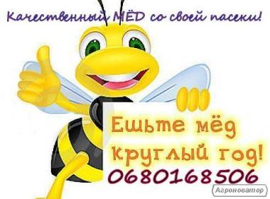 Натуральний мед зі своєї пасіки!
