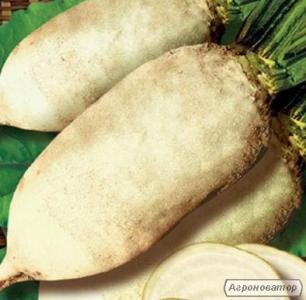 Куплю семена кормовой свеклы (буряка) всех сортов и люцерны