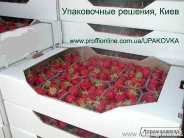 Тара для ягод, гофролотки и пинетки  для клубники, малины, голубики,