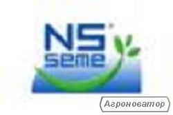 Семена подсолнечника НС Адмирал (НС-Х-195) экстра (высокоурожайный)