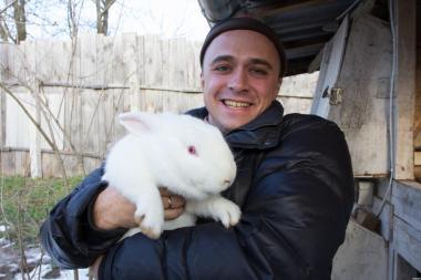 Термонська порода кролів