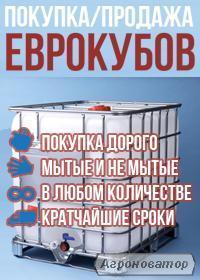 Продаж та прийом кубових ємностей 1000л бу