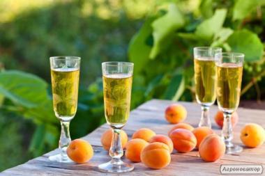 Домашні фруктові вина