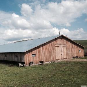 Феревяна ферма на разбор, на разбор.