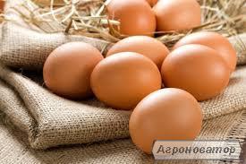 Яйця курячі