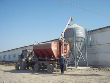 Бункера для хранения корма