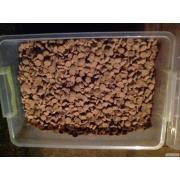 сухой корм для собак по 15, 25кг от Acana, Orijen, Royal  отличаются