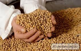 Продам Сою не ГМО