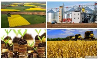 Продаємо землю, фермерські господарства України