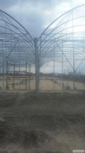 Промислові плівкові теплиці для комерційного вирощування