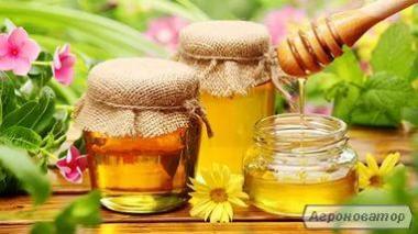 Продам мед Черниговщины
