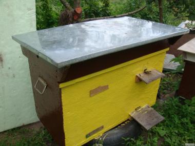 вулика з бджолами Дадан( на , 16, 20, рамок) і Українка