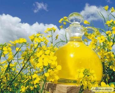 Продам оптом олію ріпакову