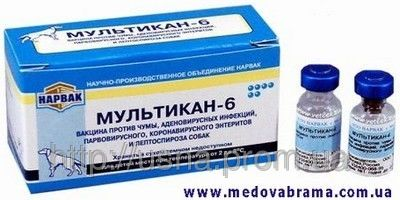 Мультикан-6, НАРВАК, Росія (2 фл. — 1 доза)