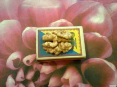 Семена грецкого ореха.Есть и пророщенный орех Идеал,Кочерженко.