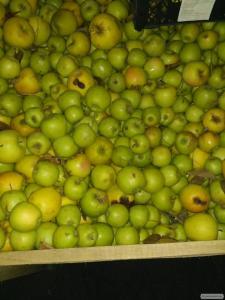 Продам яблоки оптом и небольшими партиями