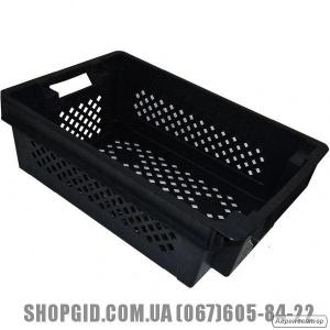 Пластикові ящики для риби,овочів,фруктів купити в Бердянську shopgid