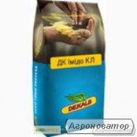 Семена озимого рапса Monsanto гибрид ДК Імідо