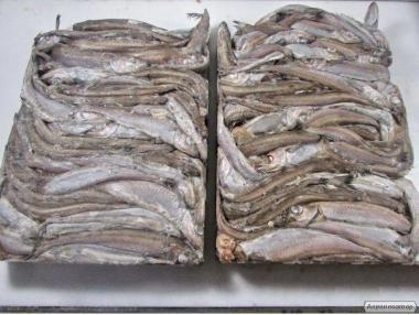реалізовуємо рибу свіжоморожену Мінтай 25+  путасу 22+