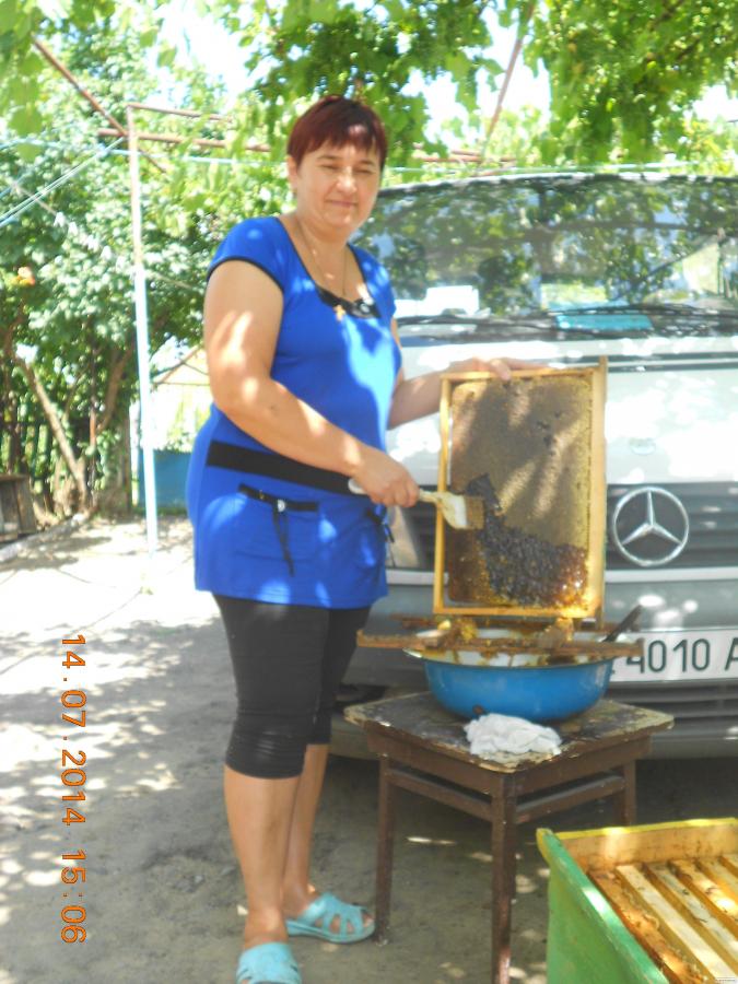 Продам Пчелопакеты в Одесской области