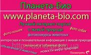 Фотосайт Планета Біо - конкурси про тварин, сайт гарних картинок і фотоприколів