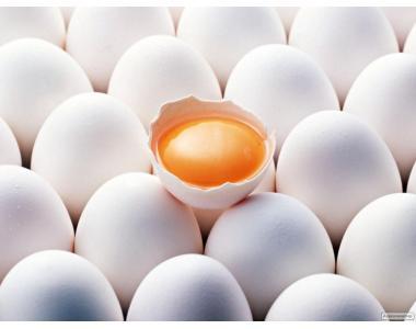 Продам яйца куриные столовые в Харькове со склада или с доставкой