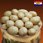 Орла сорт картофеля 1репр. 16грн/кг