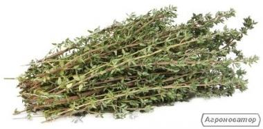 Заготовлю под заказ лекарственные растения