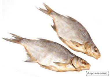 В'ялена та копчена риба за доступною ціною.