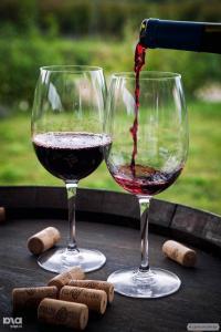Продам заводські вина на розлив !