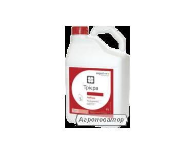Гербіцид Трієра (avgust crop protection)
