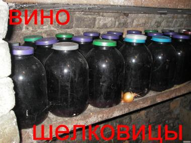 Лікувальна домашнє vino з колированной шовковиці