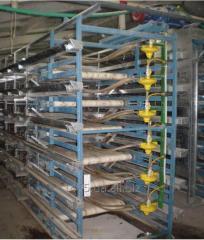 Кліткове обладнання для вирощування перепелів ОКП-4