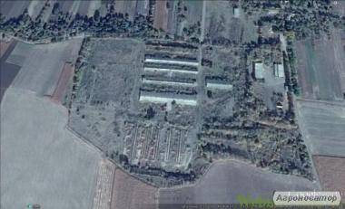 Продается ферма в комплексе зданий и сооружений для содержания скота