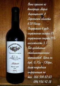 Продам натуральные сухие вина Каберне совиньон и Мерло.