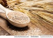 Продаємо висівки пшеничні