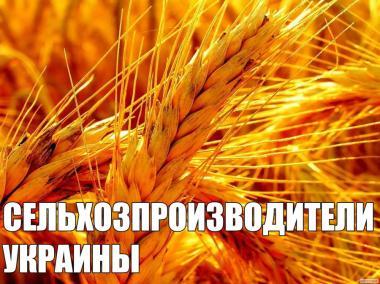 Виробники зернових, олійних культур України 2017р.