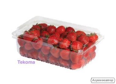 Лоток для ягод